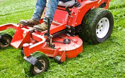 8 Important Lawn Care Tips for People Living in Texas
