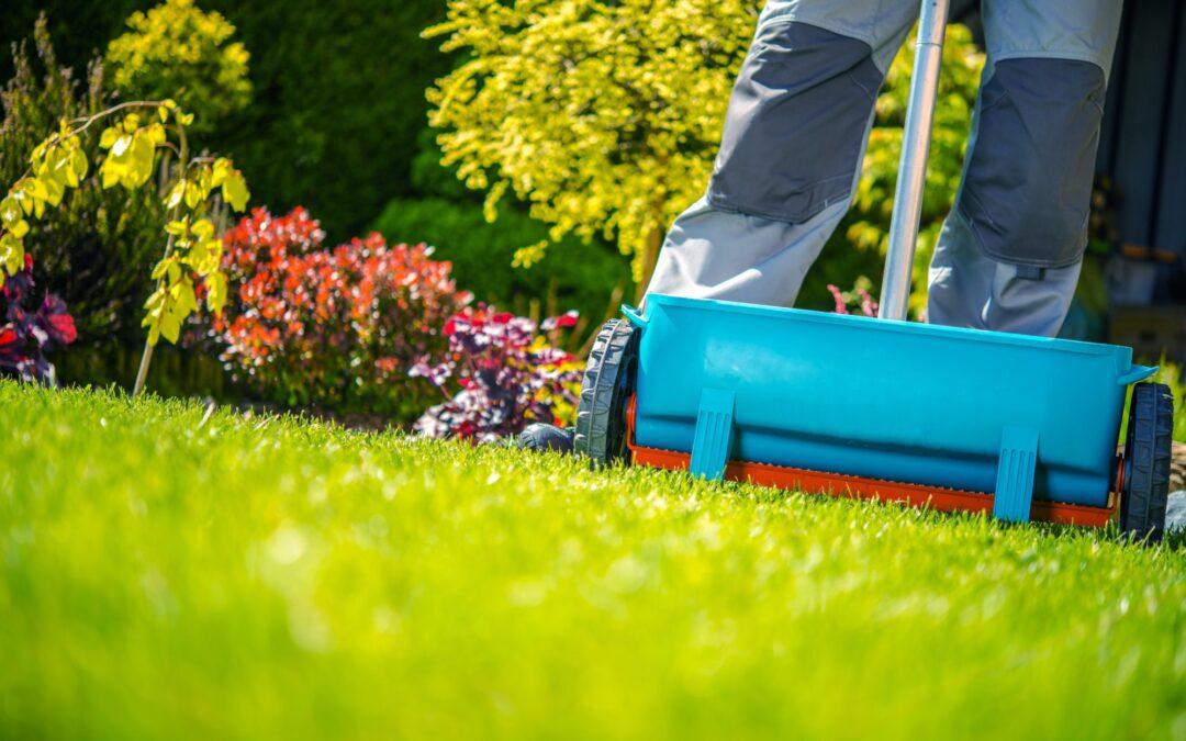 Fertilize Your Lawn in Five Easy Steps