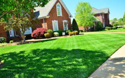 5 Tips on Choosing a Lawn Care Service for Homeowners